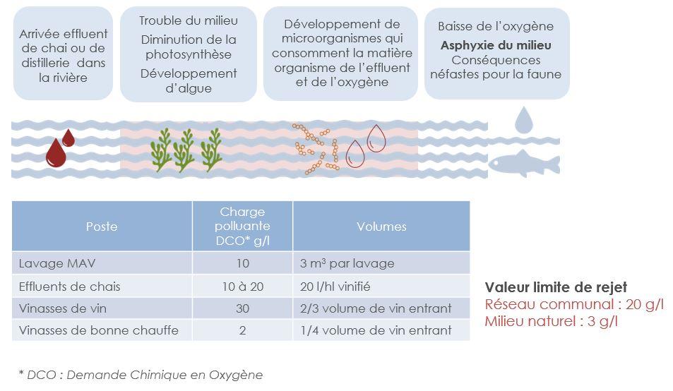 impact des effluents